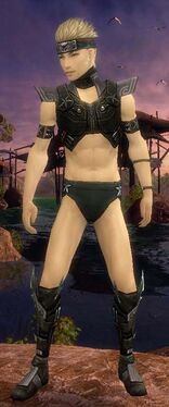 Assassin Luxon Armor M gray chest feet front