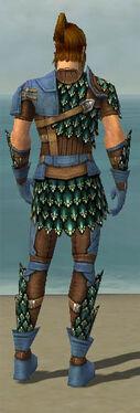 Ranger Drakescale Armor M dyed back