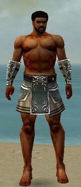 Warrior Istani Armor M gray arms legs front