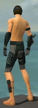 Assassin Seitung Armor M gray arms legs back