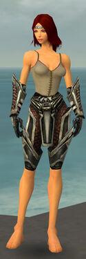 Warrior Elite Kurzick Armor F gray arms legs front