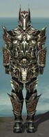 Warrior Elite Kurzick Armor M gray front