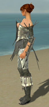 Elementalist Primeval Armor F gray side