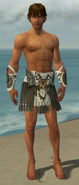 Paragon Elite Sunspear Armor M gray arms legs front