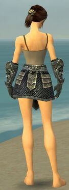 Warrior Elite Templar Armor F gray arms legs back