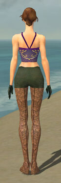 Mesmer Performer Armor F gray arms legs back