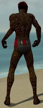 Necromancer Elite Scar Pattern Armor M dyed back