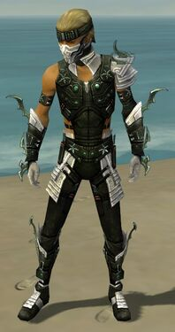 Assassin Elite Luxon Armor M dyed front