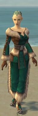 Monk Norn Armor F dyed front