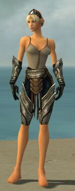 Warrior Elite Sunspear Armor F gray arms legs front
