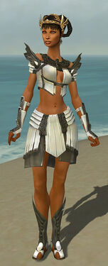 Paragon Ancient Armor F gray front