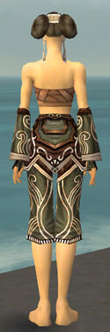Monk Canthan Armor F gray arms legs back