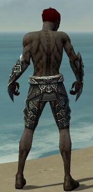 Necromancer Monument Armor M gray arms legs back