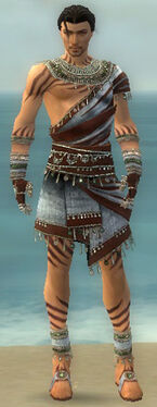 Ritualist Exotic Armor M gray front