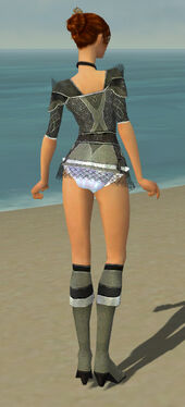 Elementalist Kurzick Armor F gray chest feet back