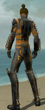 Assassin Exotic Armor M gray back