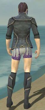 Elementalist Ascalon Armor M gray chest feet back