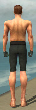 Mesmer Krytan Armor M gray arms legs back