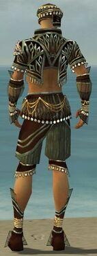 Ritualist Vabbian Armor M gray back