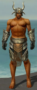 Warrior Elite Sunspear Armor M gray arms legs front