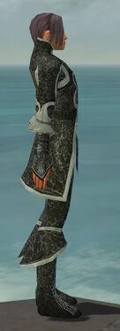Elementalist Elite Canthan Armor M gray side
