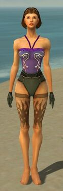 Mesmer Primeval Armor F gray arms legs front