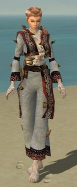 Monk Primeval Armor F dyed front