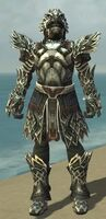 Warrior Silver Eagle Armor M gray front