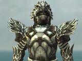 Warrior Silver Eagle armor/Male