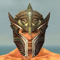 Warrior Monument Armor M gray head front