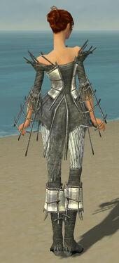 Elementalist Primeval Armor F gray back