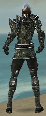 Necromancer Fanatic Armor M gray back
