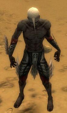 Necromancer Primeval Armor M gray arms legs front