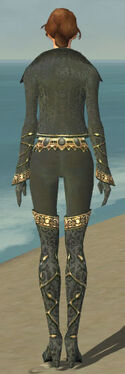 Mesmer Krytan Armor F gray back
