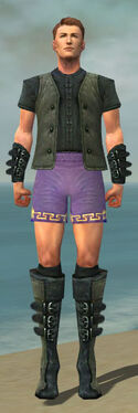 Mesmer Rogue Armor M gray chest feet front
