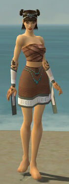 Monk Elite Woven Armor F gray arms legs front