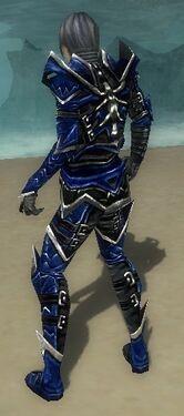 Necromancer Elite Profane Armor M dyed back