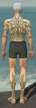 Necromancer Scar Pattern Armor M gray chest feet back