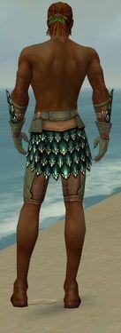 Ranger Drakescale Armor M gray arms legs back