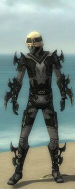 Assassin Kurzick Armor M gray front