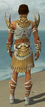 Paragon Elite Sunspear Armor M dyed back