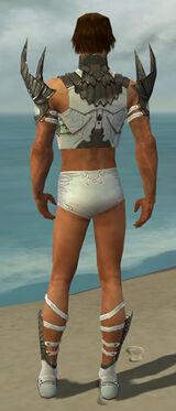Paragon Elite Sunspear Armor M gray chest feet back