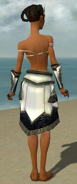 Paragon Obsidian Armor F gray arms legs back