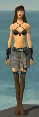 Assassin Canthan Armor F gray arms legs front