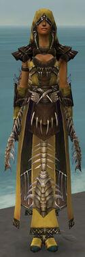 Dervish Primeval Armor F dyed front