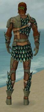Ranger Drakescale Armor M gray back