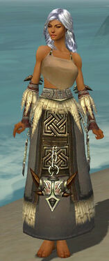 Dervish Norn Armor F gray arms legs front