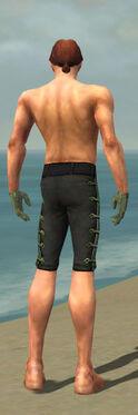 Mesmer Shing Jea Armor M gray arms legs back