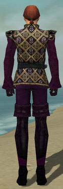 Mesmer Courtly Armor M dyed back