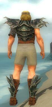 Warrior Luxon Armor M gray chest feet back